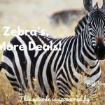 Jeff Koser, Donald Kelly, Selling To Zebra, CRM